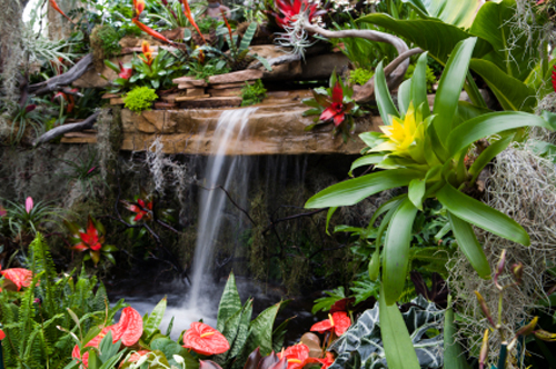 The rhs chelsea flower show trends for 2012 for Exotic garden designs